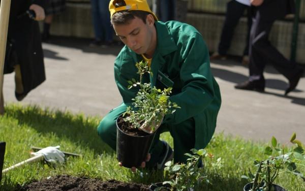Должностная Инструкция Рабочий Зеленого Хозяйства - фото 5